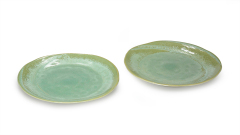 Teller grün